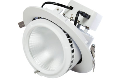 Circular Gimbal Downlight 38W