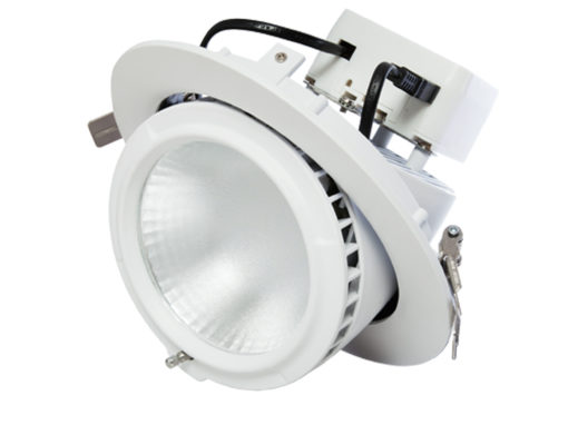 Circular Gimbal Downlight 20W